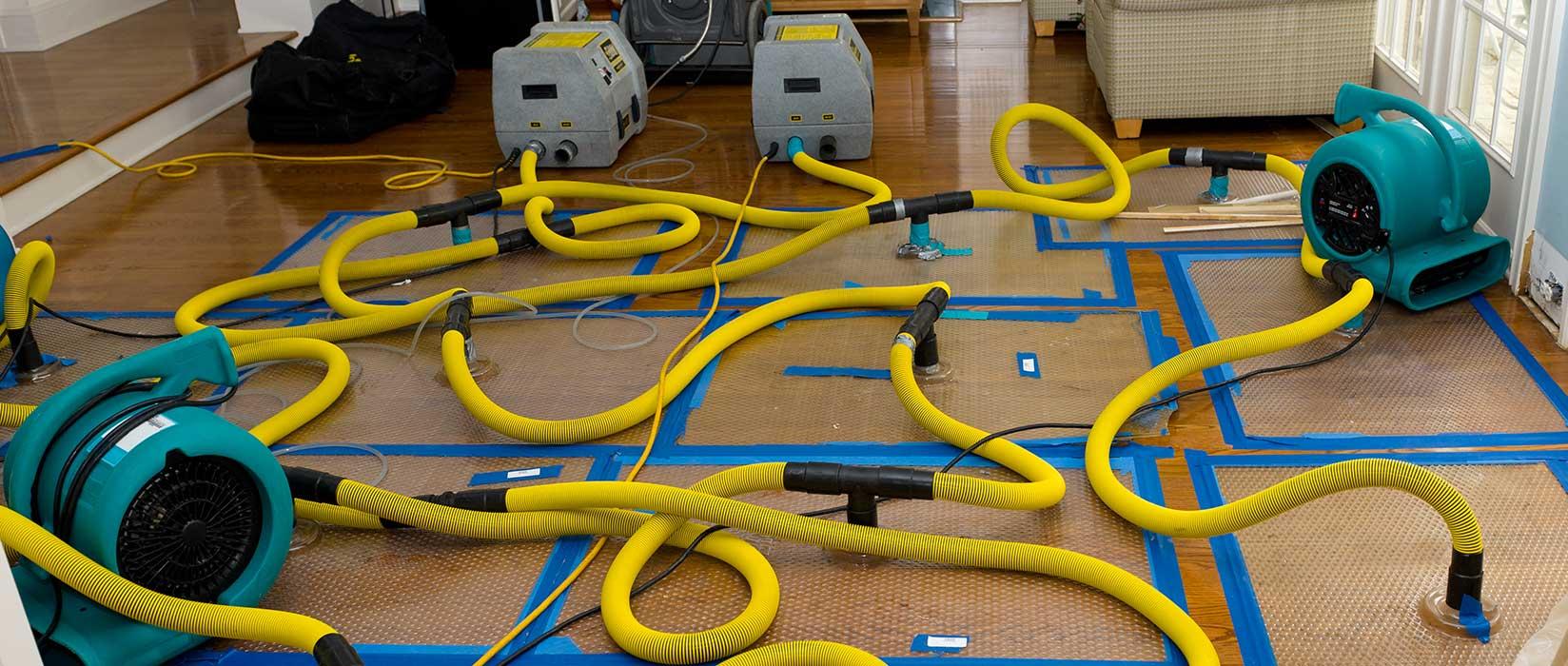 drying services ottawa ontario