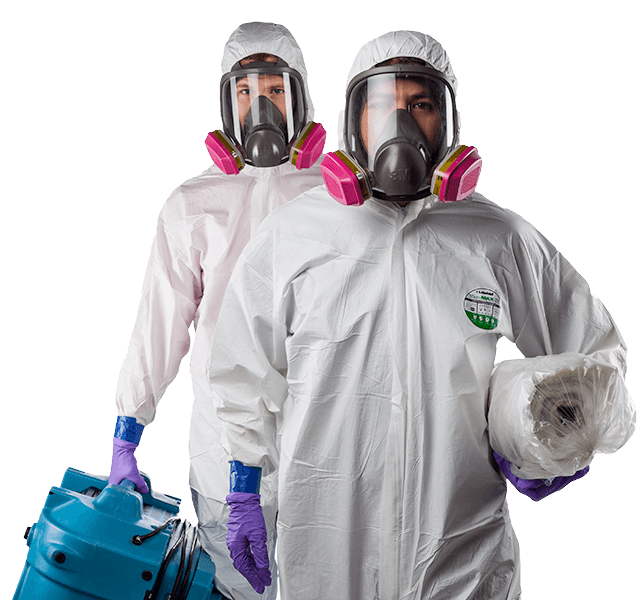 mold remediation KANATA
