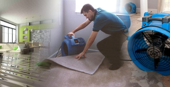 WATER DAMAGE REMOVAL OTTAWA